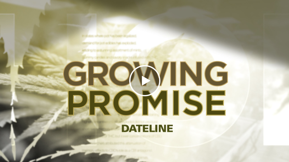 NBC Dateline's Growing Promise: A Look At The Future Of Hemp In The U.S.